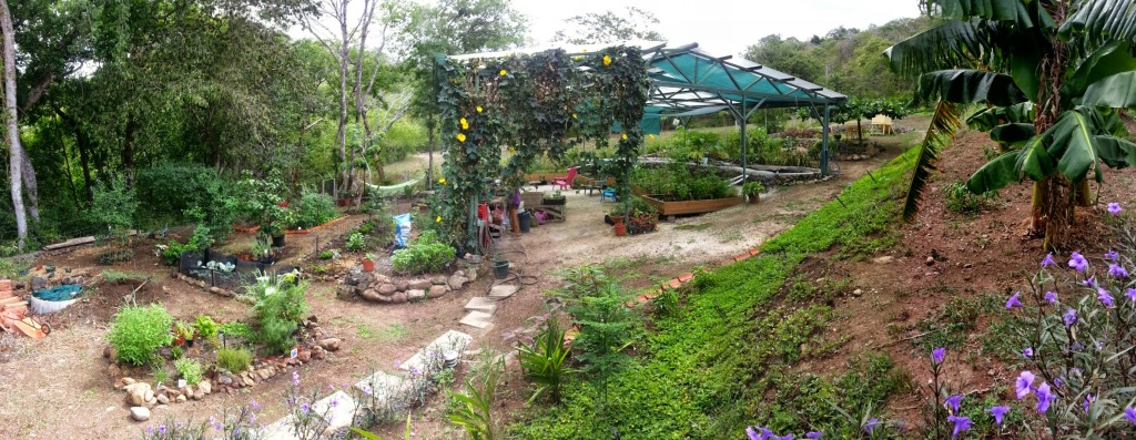 Aquaponics and Garden in Costa Rica