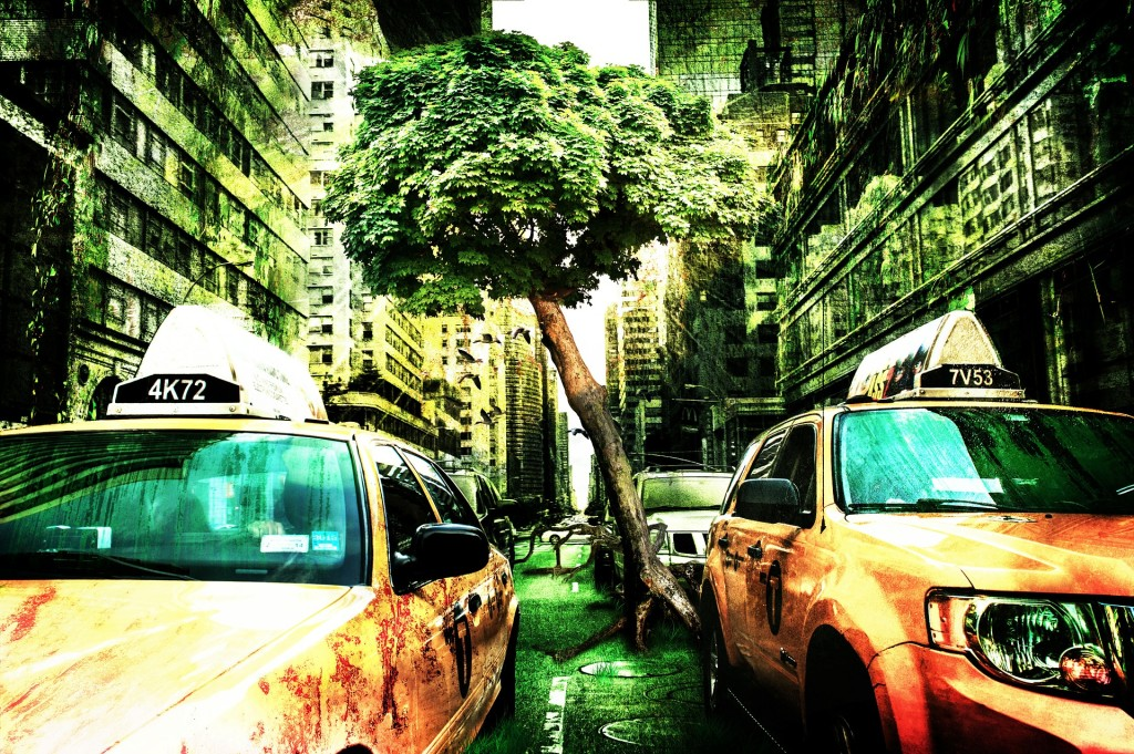 nature taking over city, tree growing in middle of road.  Apocalyse