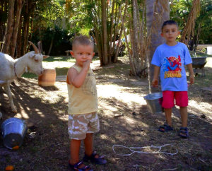 kids gardening and helping milk the goat