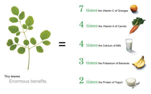 charts showing nutritional benefits of Moringa