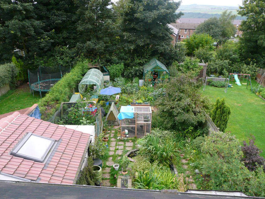 Permaculture garden in urban area