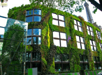 crazy huge vertical garden
