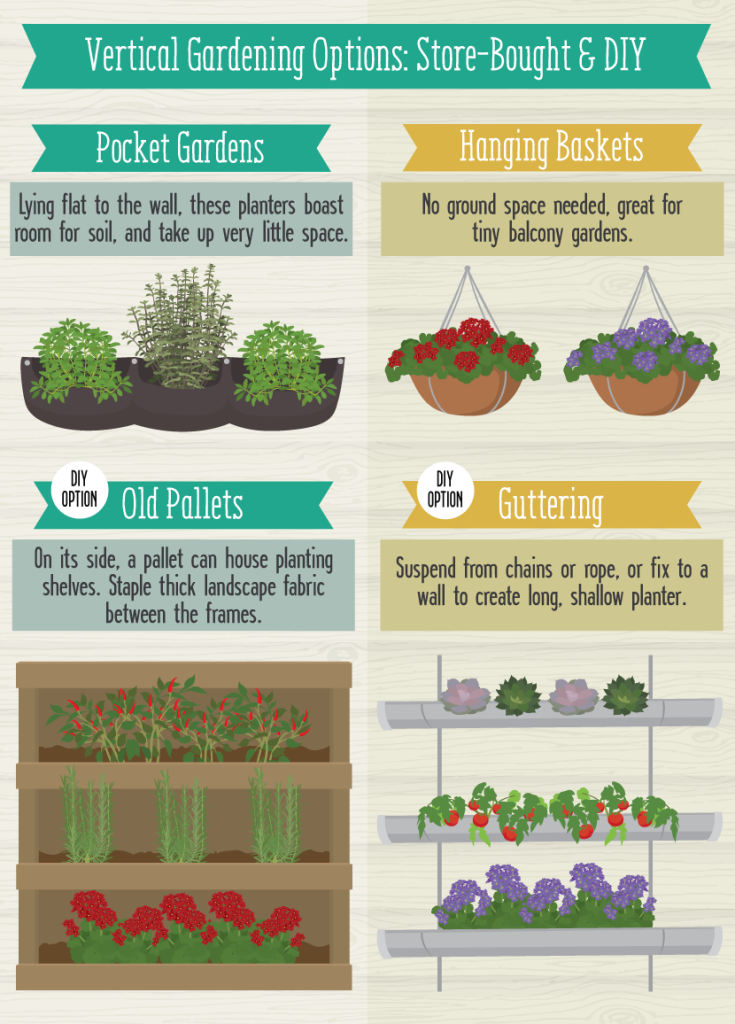 Good plant options for a vertical garden