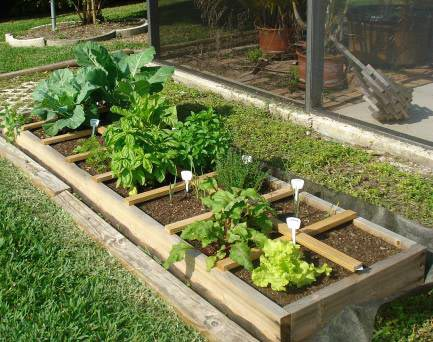 How to build a raised bed garden (12)