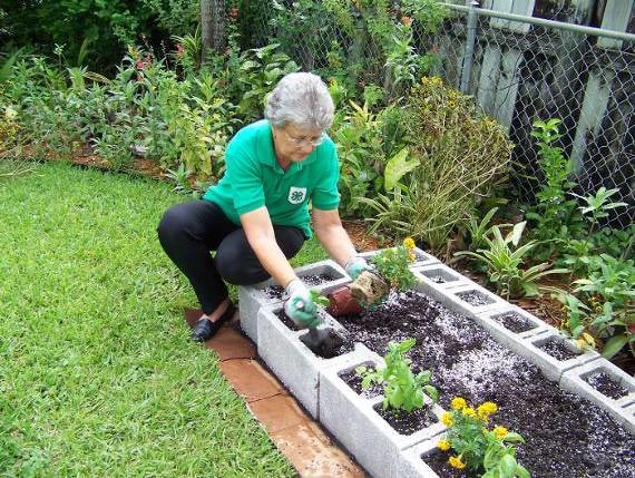 planting in a the raised bed garden