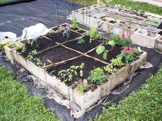 How to build a raised bed garden (7)